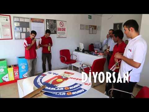 Gulumseten Araslar Grubu Diyarbakirda