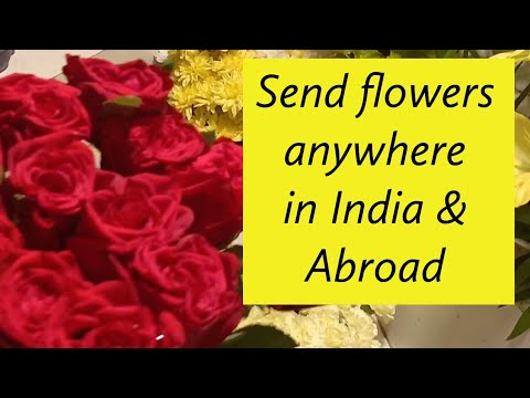 Ferns N Petals Across India | Florists In Mumbai | Flowers And Gifts At Various Franchisee Outlets |