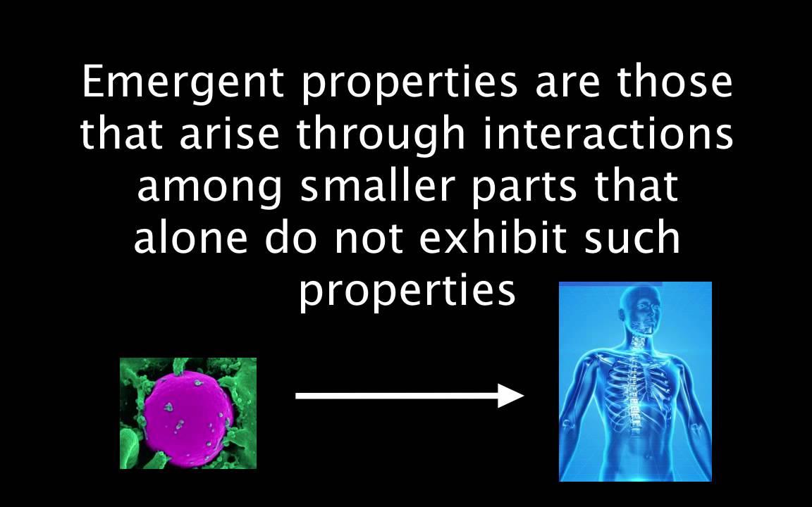 1.1 Emergent Properties