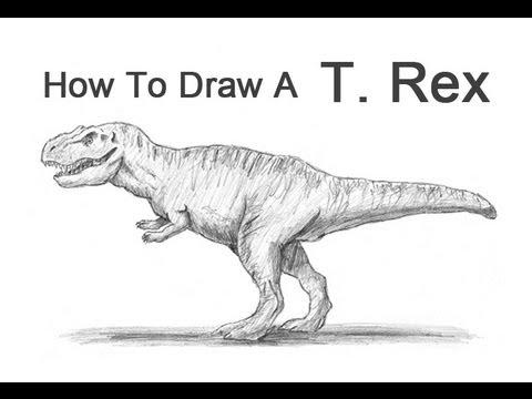 How to Draw a Tyrannosaurus Rex (T. rex)