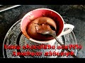 Download EASY CHOCOLATE SOUFFLE - First attempt of an amateur (no flour) MP3 song and Music Video