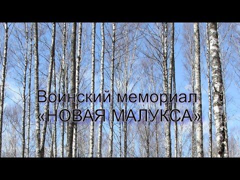 Воинский мемориал Новая Малукса.  8 мая 2017г.