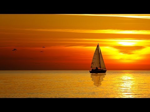 8 Hour Deep Sleep Music, Peaceful Music, Relaxing, Meditation Music, Sleep Meditation Music, ☯3348