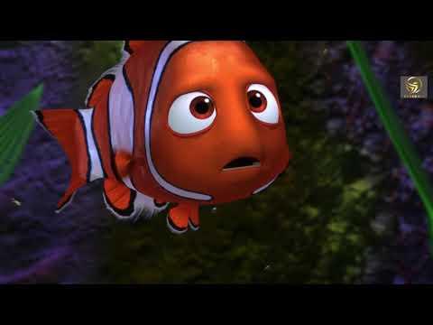 นีโม...ปลาเล็ก หัวใจโต๊...โต - ฉากที่ดีที่สุด | เสียงไทยมาสเตอร์ HD Bluray 1