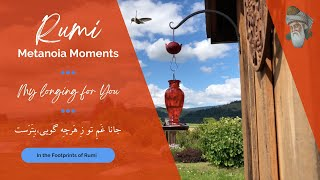 Rumi - Metanoia Moments (My longing for You)