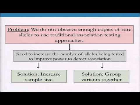 BroadE: Statistical Genetics - Rare Variants