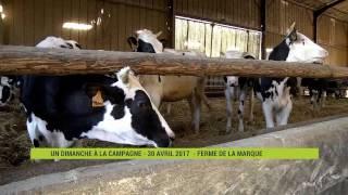 La Ferme de la Marque : l'agriculture expliquée