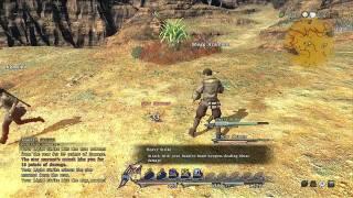 Final Fantasy XIV: Video Impressions