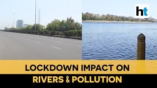 Watch: Impact of lockdown on India's rivers & pollution levels