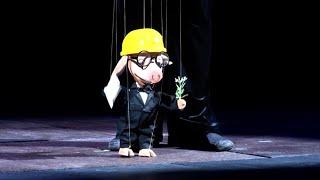 Открытие саратовского цирка и театра кукол после ремонта