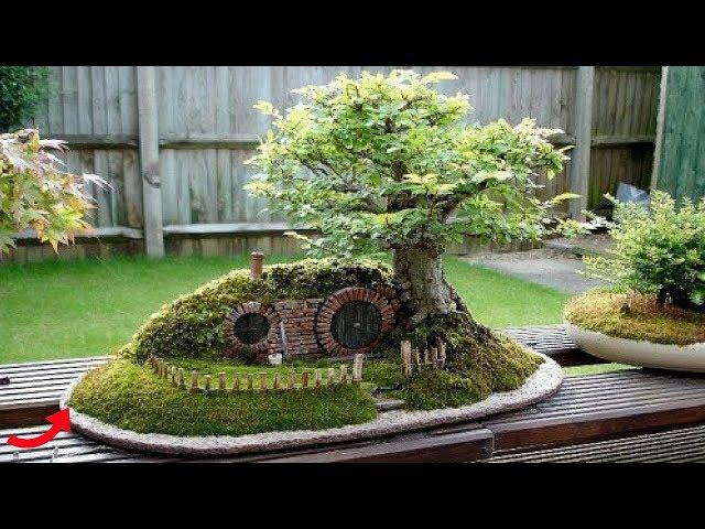Mãn nhãn ngắm tiểu cảnh bonsai siêu lạ
