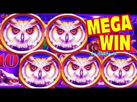 ★5 BONUS SYMBOL★ SUPER GAME ★HUGE WIN!★ TIMBERWOLF DELUXE slot machine BONUS WINS! - 동영상