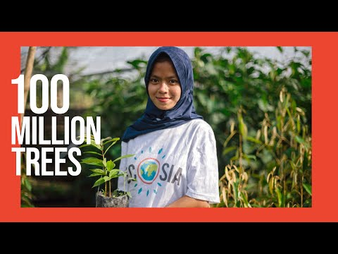 How 100 million trees are changing the world