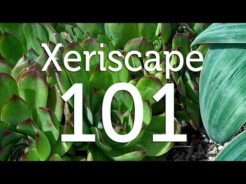 What is Xeriscape Gardening?