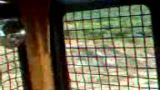 Download Video Anak SD VS Anak sma MP3 3GP MP4