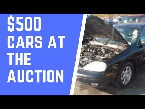 $500 Cars At The Auction Is It Real
