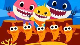 Baby Shark | Animal Songs | Songs For Children | Nursery Rhymes & Kids Songs