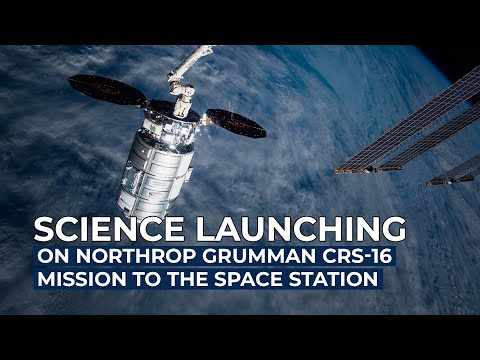 Science Launching on Northrop Grumman CRS-16 Mission to the Space Station