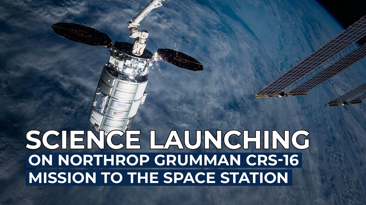#Science Launching on Northrop Grumman's CRS-16 Mission to the Space Station