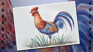 Paint rooster, watercolor. Symbol of the year 2017.