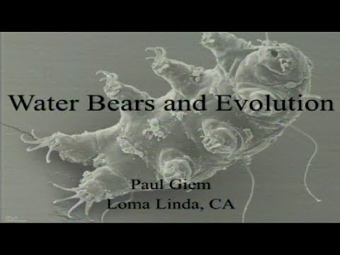 Water Bears and Evolution 9-23-2017 by Paul Giem