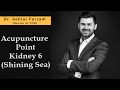 Acupuncture Point Discussion - Kidney 6