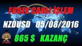 Forex NZDUSD 18 saatte 865 $ canlı  05/08/2016
