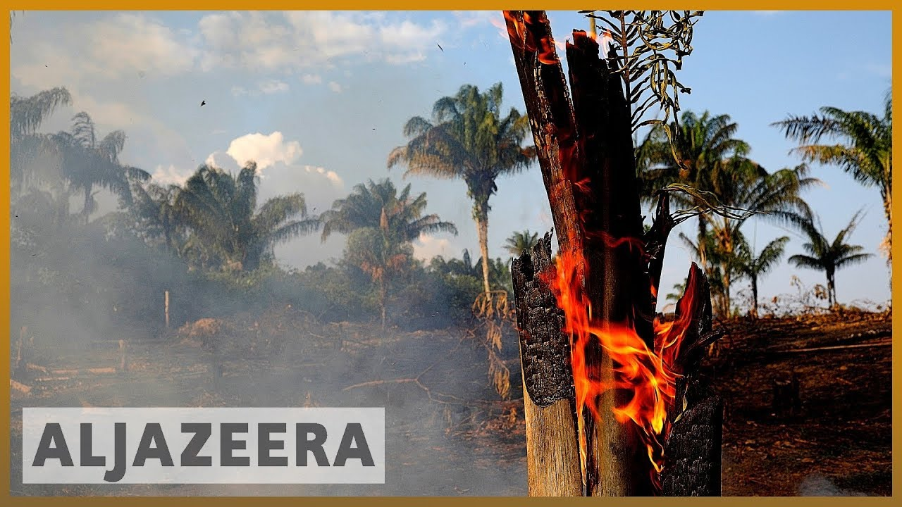 AlJazeera English:'Our house is burning': Macron urges G7 action on Amazon fires