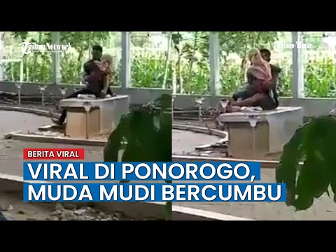 Viral, Video Muda Mudi dengan Cueknya Bercumbu di Taman Depan Kantor Dinas Walaupun Ada Pengunjung