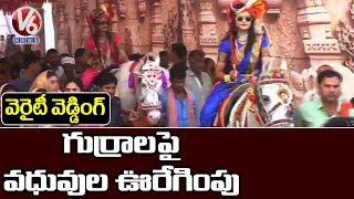 మధ్య ప్రదేశ్ లో వెరైటీ వెడ్డింగ్ , గుర్రాలపై పెళ్లికూతుళ్ల ఊరేగింపు Telugu News