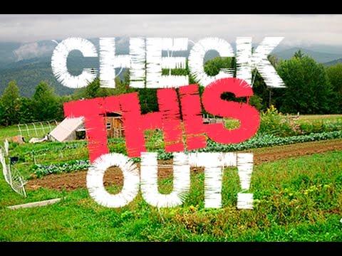 Support Local Small Farms - Conover Organic