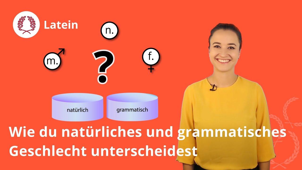 Femininum neutrum was bedeutet maskulinum almanca maskulinum