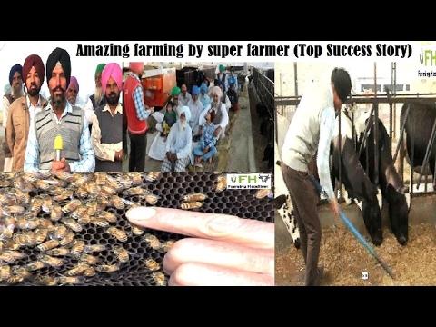Amazing farming by sedulous progressive farmer | Gurmeet Singh | Punjab