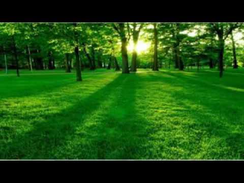 Lagu Sholawat  -  Maulaya Sholli Wasallim Daiman Abada Mp3