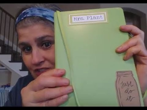 Mrs. Plant Update - Oil-Free Indian Food, Wedding, Bullet Journaling and such