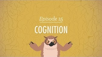 Cognition - How Your Mind Can Amaze and Betray You: Crash Course Psychology #15