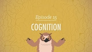 Cognition: How Your Mind Can Amaze and Betray You - Crash Course Psychology #15