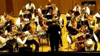 Sinfonia in D Major