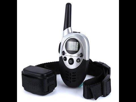 E613 Waterproof LCD Pet Dog Training Collar Review [PT]
