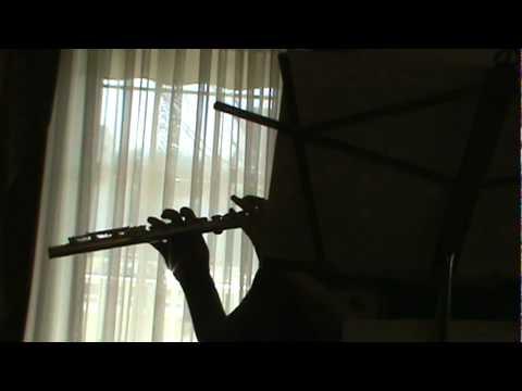 Alice Human Sacrifice  Vocaloids on flute