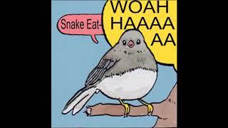 snake eater bird meme