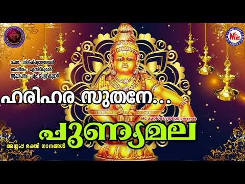 ഹരിഹരസുതനേ ജപമയനേ | PUNNYAMALA | Ayyappa Devotional Song Malayalam | M.G. Sreekumar