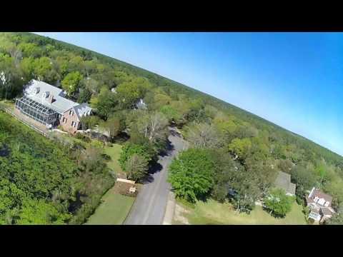 Drone alligator pond. Niceville, FL