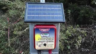 My Solar Electric Fence Setup