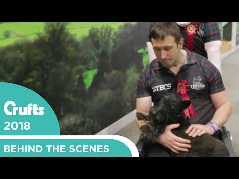 Meet the New Patron of STECS - Scottish Terrier Emergency Care Scheme | Crufts 2018