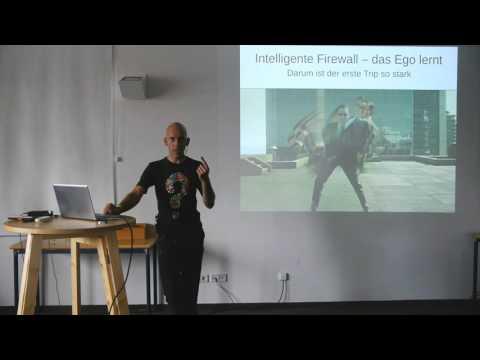 Entheo-Science/Joe Schraube: Die Psychedelische Erfahrung als Denial of Service Attack