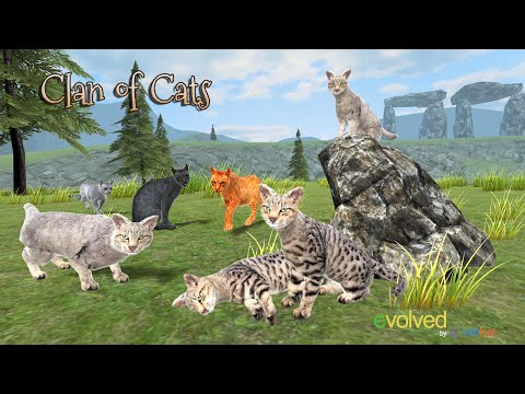 🐈😺Clan of Cats - By  Wild Foot Games - Adventure - Google Play(Super HD Quality)