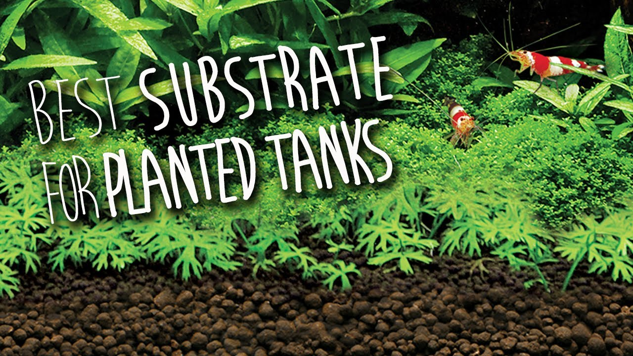 fluval stratum substrate for planted aquariums youtube