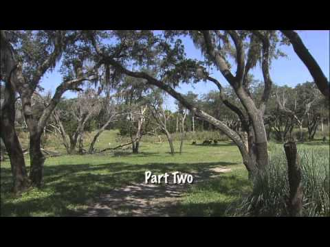 A Day for Nature - Florida