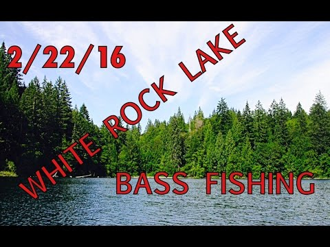 White Rock Lake Bass Fishing Tips